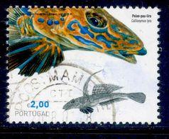 ! ! Portugal - 2006 Fishes - Af. 3478 - Used - 1910-... République