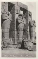 Egypt - Thebes - The Ramseseum - Statue Of Ramses II - Egypt