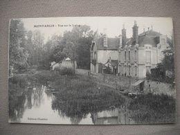 1894  Carte Postale  MONTARGIS    Vue Sur Le LOING        45 Loiret - Montargis