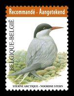 Belgium 2013 Mih. 4352 Definitive Issue. Fauna. Birds. Arctic Tern MNH ** - Ungebraucht