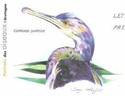 CORMORAN JUVENILE ( OISEAU DE BRETAGNE ) ILLUSTRATION SIGNEE - PAP ENTIER POSTAL FLAMME LA POSTE 2010, VOIR LES SCANNERS - Pingouins & Manchots