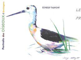 ECHASSE BLANCHE ( OISEAU DE BRETAGNE ) ILLUSTRATION SIGNEE - PAP ENTIER POSTAL FLAMME LA POSTE 2010, VOIR LES SCANNERS - Pingouins & Manchots