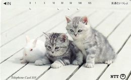 JAPAN - Cats(111-088), 02/96, Used - Japon