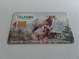 Mexico - Very Old Phonecard Telnor - Panama
