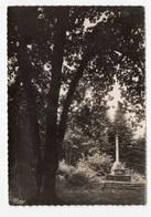 DF / 35 ILLE ET VILAINE / L'HERMITAGE / LA CROIX SAINT-LAMBERT - Autres Communes