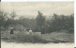 VIROFLAY - Bois Communaux - Viroflay