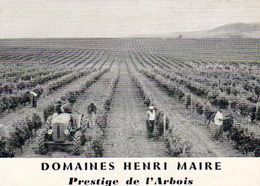 D39  ARBOIS  Carte Publicitaire Port Payé Vins Henri Maire  ..........Travaux Dans Les Vignes Avec Tracteur - Arbois