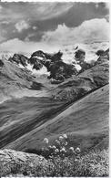 Bonneval Sur Arc - Le Glacier Des Evettes, Ciamarella Et Glacier De L'Albaron, Sur La Route Du Col De L'Iseran - Bonneval Sur Arc
