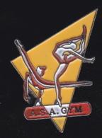66325-Pin's.Avrillé.association Asa Gym Forme Adultes Gymnastique - Gymnastics