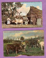 Portugal Costumes Portuguezes Pastando ( Carte Dechirée)- Maia Carro De Estrume Chariot De Fumier ( Carte Pliée En Bas - - Otros