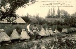 FRANCE - Carte Postale - St Pouange - Apiculteur Bernet - Travail Aux Ruches - L 66187 - Andere Gemeenten