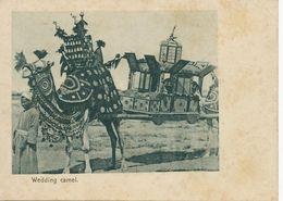 Pioneer Short Size Card Wedding Camer . Chameau Mariage   . Undivided Back . Turkish Shop . J. Benghiat - Yemen