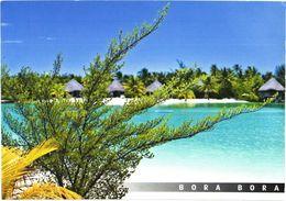 Bora Bora Island:Beach On A Motu - Französisch-Polynesien