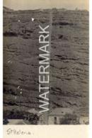 ST HELENA  OLD R/P POSTCARD BRITISH OVERSEAS TERRITORY OFF AFRICA - Ansichtskarten