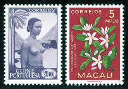 * Sammlungen Und Posten Weltweit - Stamps