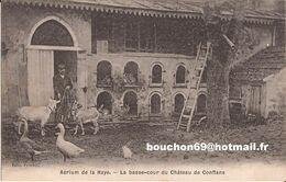 78 Aerium De La Haye La Basse Cour Du Chateau De Conflans Ste Sainte Honorine Oies Chevres Goat - Conflans Saint Honorine