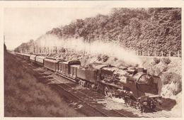 Chelmin De Fer Du Nord - Train 72 Boulogne-Paris Sans Arrêt, 254 Kms En 2h54 - Trains
