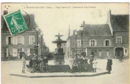 CHER 18.HENRICHEMONT PLACE HENRI IV FONTAINE ET RUE D ANJOU - Henrichemont