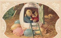 Chicks ,  EASTER , 00-10s - Pasqua
