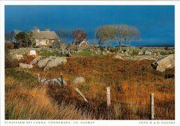 1 AK Irland / Ireland * Schaffarm Bei Carna - Ein Gebiet In Connemara - County Galway * - Galway
