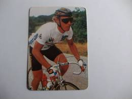 Cycling/Cyclisme Tour De France Steve Bauer Portuguese Pocket Calendar 1986 - Small : 1981-90