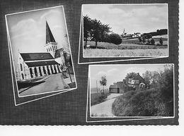 """ASSE   - Sint Martinuskerk / Zicht Op Asse / Museum """"De Vaerenbergh"""" - Asse"""