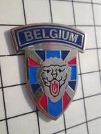 216c Pin's Pins / Beau Et Rare / THEME : MILITARIA / BADGE MILITAIRE ? BELGIUM - Militair & Leger