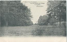 Brasschaat - Brasschaet - Vue Du Moulin Du Village - Le Voshol - N. 294 J. Van Wesenbeeck - 1904 - Brasschaat