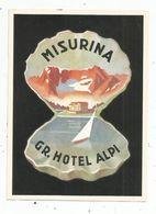 étiquette D'hotel ,G.R. HOTEL ALPI , ITALIE , MISURINA - Etiquettes D'hotels