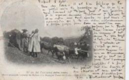 BOFFRES AU PATURAGE AGE D OR - Autres Communes