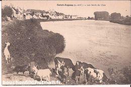 41 St Saint Aignan Les Bords Du Cher Vaches Chiens Chevre Goat Chien - Saint Aignan