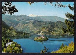 113409/ BLED, Bled Lake, Blejsko Jezero - Slovenia