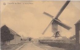 Cappelle-au-Bois - Kapelle-op-den-Bos - 1910-1920 - La Rue Du Moulin Molen - Kapelle-op-den-Bos