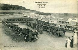 Guerre 14-18 Boulogne Sur Mer Camp Anglais AVC Army Veterinary Camp Chevaux Vétérinaire - Boulogne Sur Mer