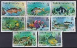 F-EX18667 TURK & CAICOS MNH 1981 MARINE LIFE SEA WILDLIFE - Peces