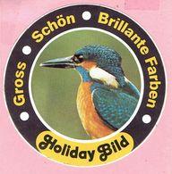 Sticker - IJSVOGEL - Gross - Schön - Brillante Farben - Holiday Bild - Autocollants