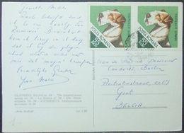 Romania - Postcard To Belgium Dog Foxterrier - Hunde
