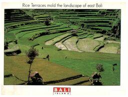 (H 22) Indonesia - Bali Rice Terrace - Cultures