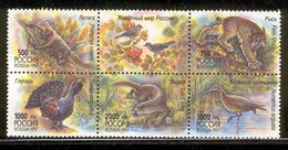 RUSSIA 1997 Wildlife; Scott Catalogue No(s). 6397 MNH Block Of 5 + Label - 1992-.... Federation