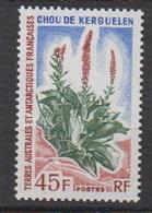 1973.TAAF -N°48** CHOU DE KERGUELEN - Neufs