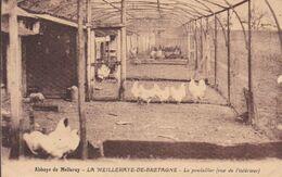 44-LA MEILLERAYE DE BRETAGNE ABBAYE LE POULAILLER - Francia