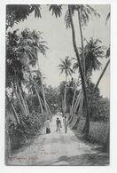 "COLOMBO - ""A Bye Path"" - Plate 38 - Sri Lanka (Ceylon)"