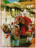 Postcard Sri Lanka, Elephant, Kandy Esala Perahera With 2 Stamps - Sri Lanka (Ceylon)