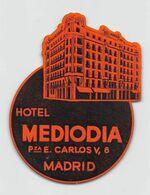 "010905 ""MADRID - HOTEL MEDIODIA - P.ZA E. CARLOS Y NR 8""  ETICHETTA  GOMMATA ORIGINALE - ORIGINAL LABEL - Etiketten Van Hotels"