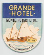 "010908 ""RECIFE - PERNAMBUCO - BRASIL - GRANDE HOTEL MONTE HOTEIS LTDA""  ETICHETTA ORIGINALE - ORIGINAL LABEL - Etiketten Van Hotels"