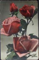 ROSA - Rose - Formato Piccolo Viaggiata - Blumen