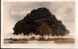 ! Alte Fotokarte,1929, Managua,  Nicaragua, Photo - Nicaragua
