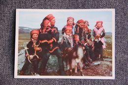 NORVEGE, NORGE : Lappic Family - Norvège