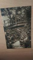 CPA - 7. SEVRES ARTISTIQUE - Ecole Normale Supérieure Le Pont Du Jardin Japonais - Sonstige Gemeinden