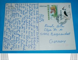 TANSANIA - AK Postcard - Brief Letter Lettre 信 Lettera Carta пи�?ьмо Brev 手紙 จดหมาย Cover Envelope (2 Foto)(34358) - Tansania (1964-...)
